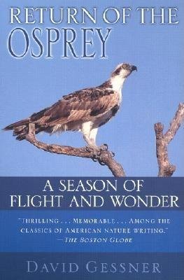 Return of the Osprey by