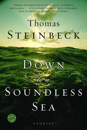 Down to a Soundless Sea by Thomas Steinbeck