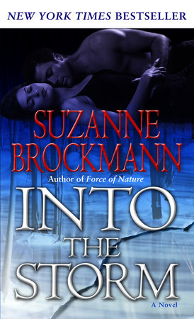 Into the Storm by Suzanne Brockmann