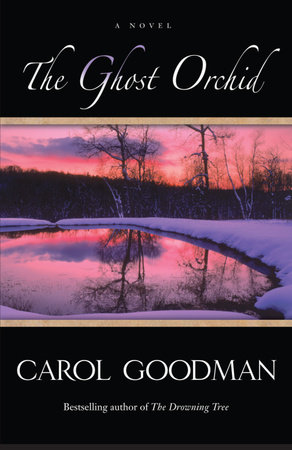 The Ghost Orchid by Carol Goodman