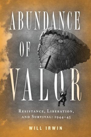 Abundance of Valor by Will Irwin