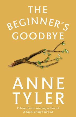 The Beginner's Goodbye book cover