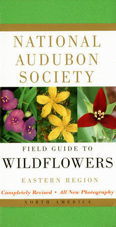 National Audubon Society Field Guide to North American Wildflowers--E by NATIONAL AUDUBON SOCIETY