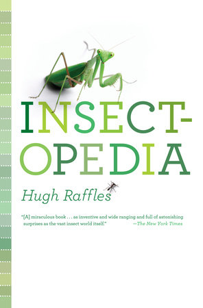 Insectopedia by