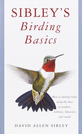 Sibley's Birding Basics by