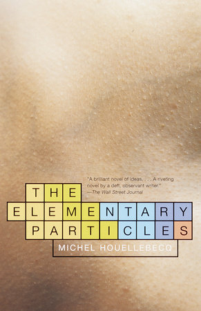 The Elementary Particles by