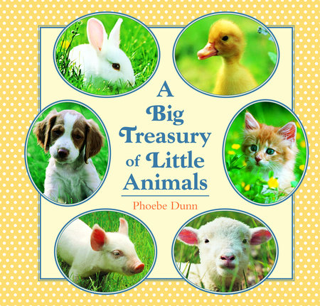 Big Treasury of Little Animals by Phoebe Dunn