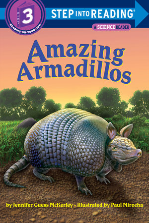 Amazing Armadillos by