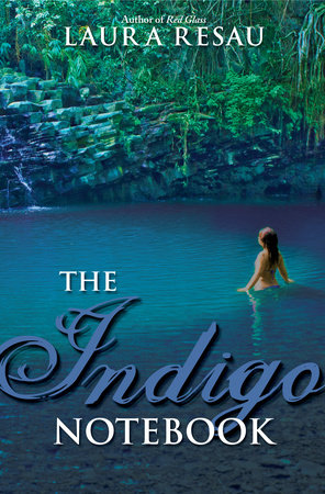 The Indigo Notebook by