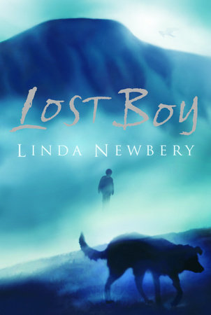 Lost Boy by Linda Newbery