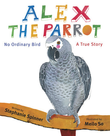 Alex the Parrot: No Ordinary Bird by