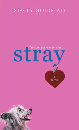 Stray by