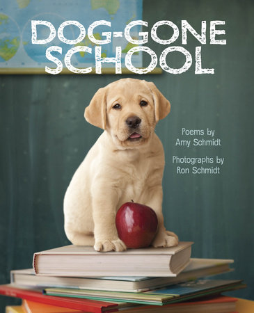 Dog-Gone School by Amy Schmidt