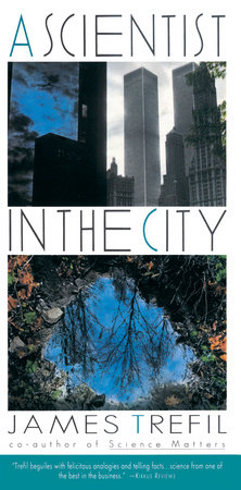 A Scientist in the City by