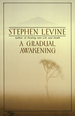 A Gradual Awakening by