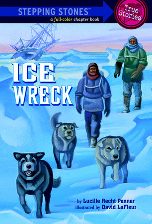 Ice Wreck by