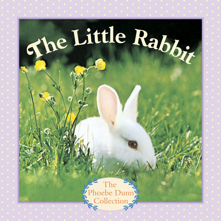 The Little Rabbit by