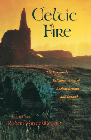 Celtic Fire by Robert Van De Weyer