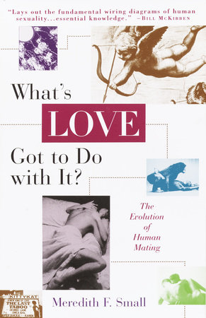 What's Love Got To Do With It by Meredith Small