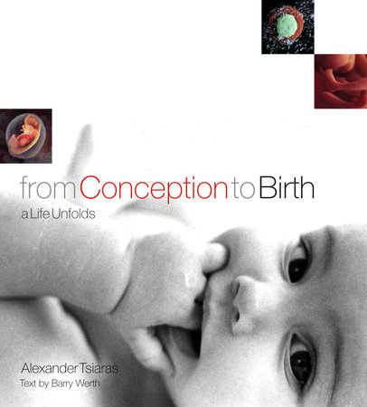 From Conception to Birth by
