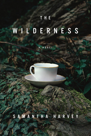 The Wilderness by