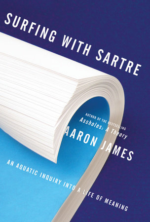 Surfing with Sartre book cover