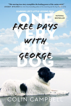 Free Days With George