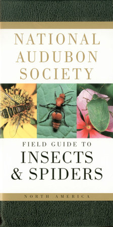 National Audubon Society Field Guide to North American Insects and Spiders by NATIONAL AUDUBON SOCIETY