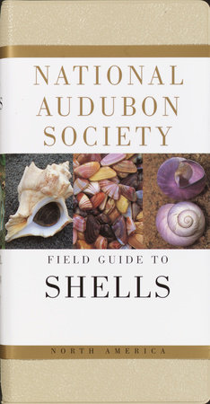 National Audubon Society Field Guide to North American Seashells by NATIONAL AUDUBON SOCIETY