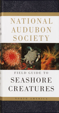 National Audubon Society Field Guide to North American Seashore Creatures by