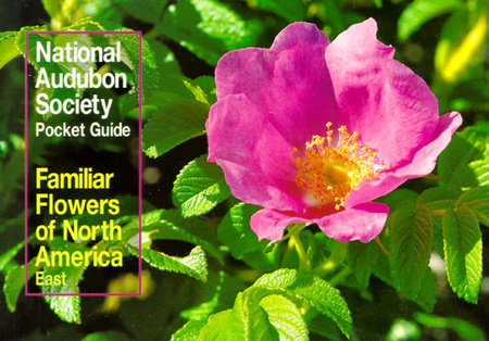 National Audubon Society Pocket Guide to Familiar Flowers by NATIONAL AUDUBON SOCIETY