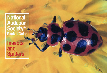 National Audubon Society Pocket Guide to Familiar Insects and Spiders by