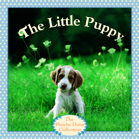 THE LITTLE PUPPY by Judy Dunn