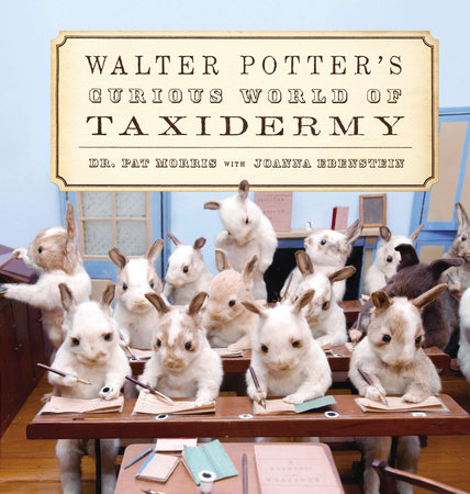 Walter Potter's Curious World of Taxidermy