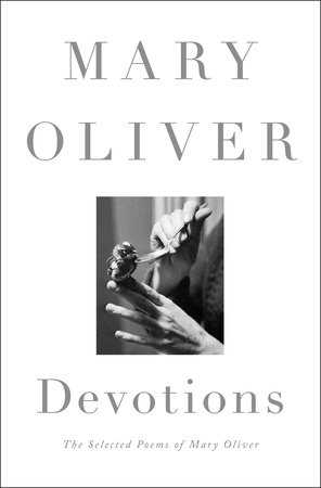 Cover art for Devotions