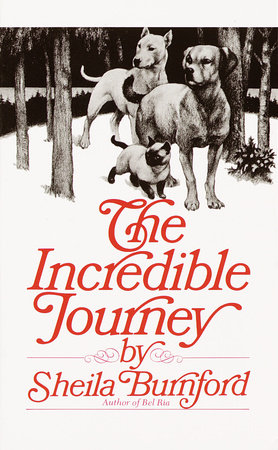 The Incredible Journey by