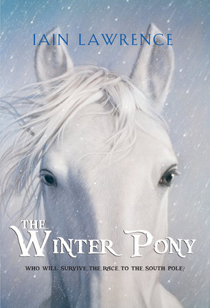 The Winter Pony by
