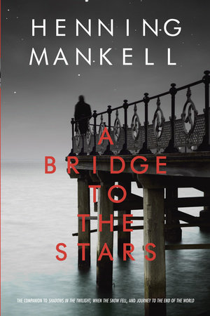 A Bridge to the Stars by