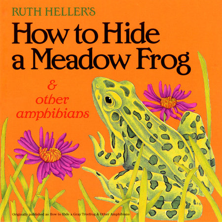 How to Hide a Meadow Frog and Other Amphibians