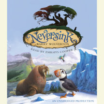 Neversink Cover