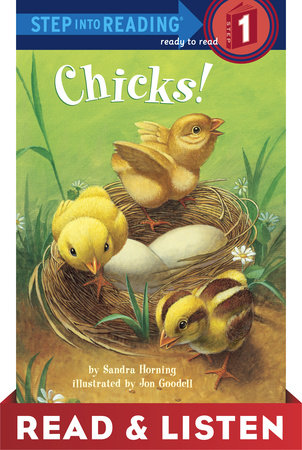 Chicks! by Sandra Horning