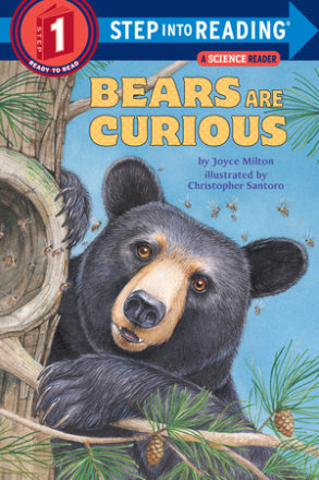 Bears Are Curious (ebk)