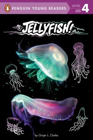 Jellyfish!