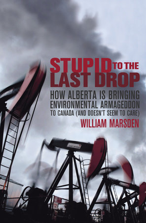 Stupid to the Last Drop by William Marsden