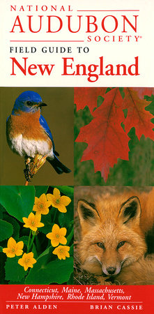 National Audubon Society Regional Guide to New England by NATIONAL AUDUBON SOCIETY