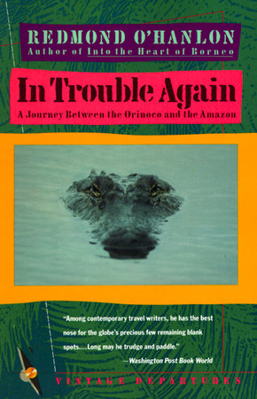 In Trouble Again by