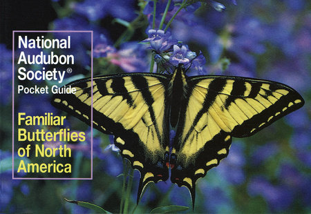 National Audubon Society Pocket Guide to Familiar Butterflies Of North America by