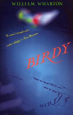 Birdy by William Wharton
