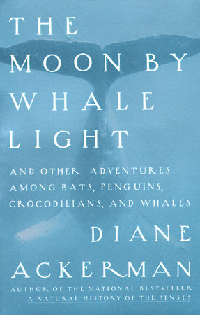 Moon By Whale Light by
