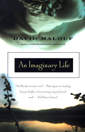 An Imaginary Life by